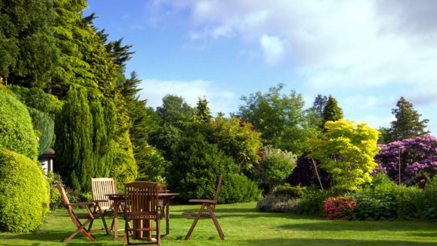 jardin vert avec table en bois