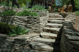escalier en pierre dans le jardin